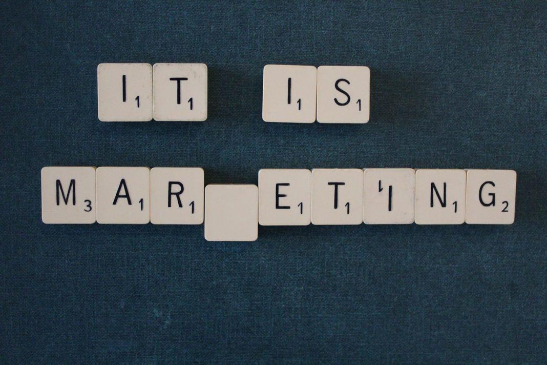 Chargé d'Études Marketing Junior : une Première Étape